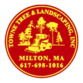 Towne Tree & Landscaping